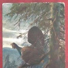 Postales: POSTAL DE 1909. Lote 155432426