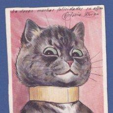 Postales: AD825 ANIMALES GATO GATOS ILUSTRADOR LOUIS WAIN ANIMALES HUMANIZADOS. Lote 159926210