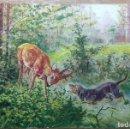 Postales: POSTAL DE 1902. Lote 160198606