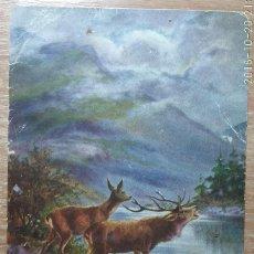 Postcards - POSTAL DE 1902 - 160287354