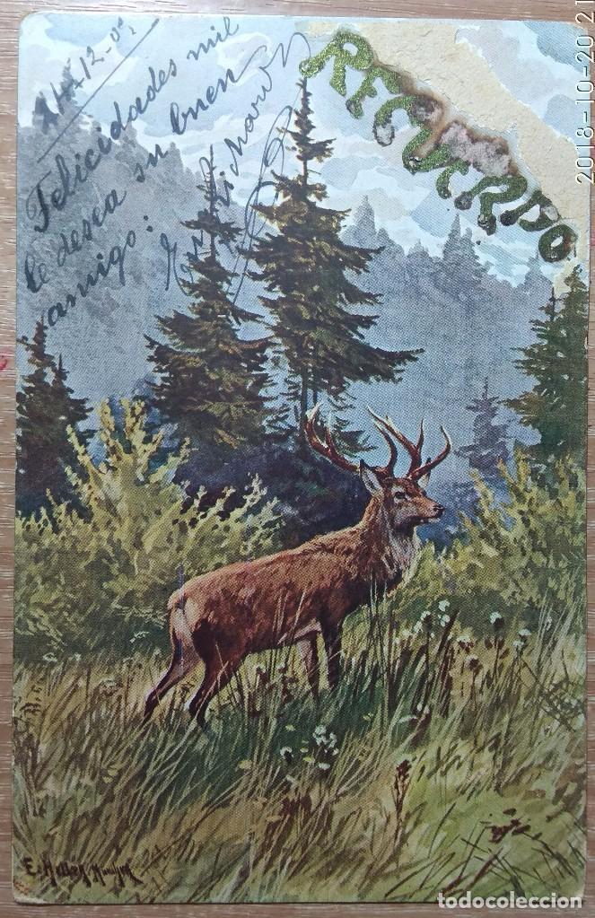 POSTAL DE 1905 (Postales - Postales Temáticas - Dibujos originales y Grabados)