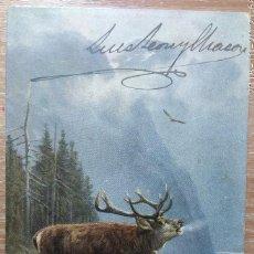 Postcards - POSTAL DE 1903 - 160429622