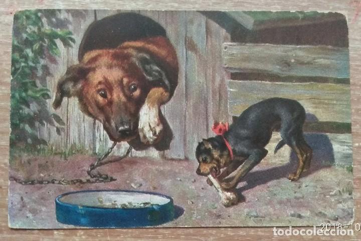 POSTAL DE 1902 (Postales - Postales Temáticas - Dibujos originales y Grabados)