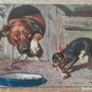 Postales: POSTAL DE 1902. Lote 160470778