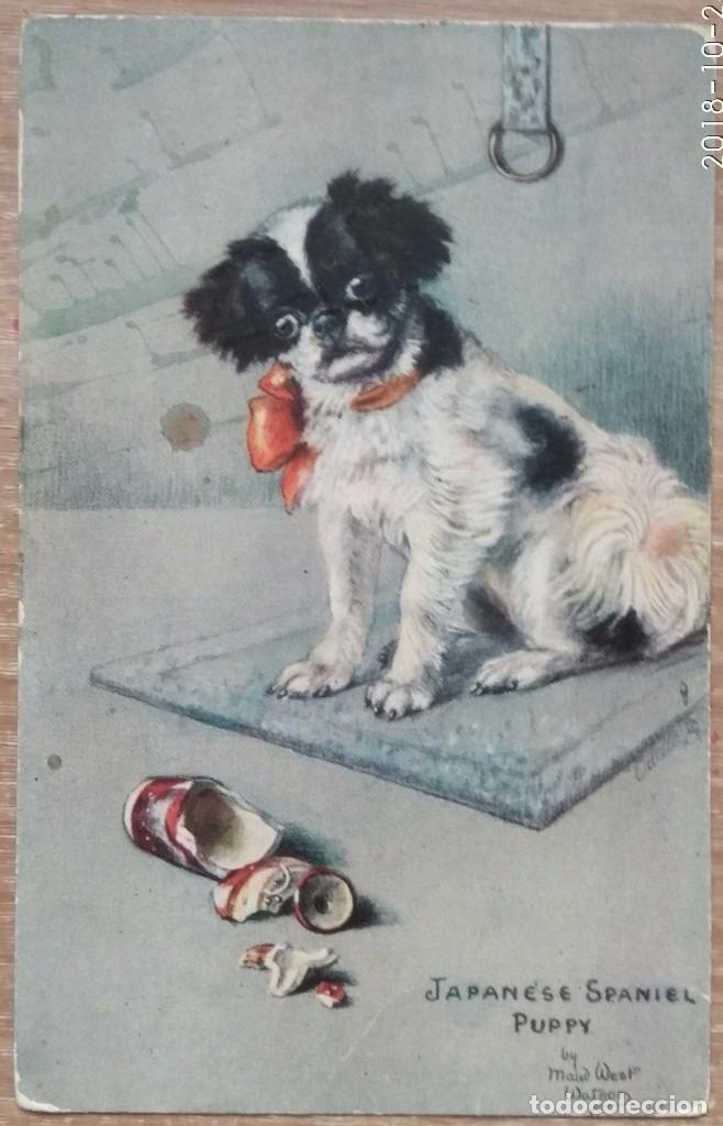 POSTAL DE 1907 (Postales - Postales Temáticas - Dibujos originales y Grabados)