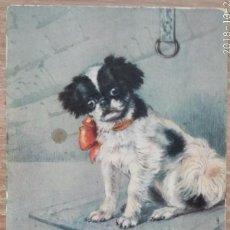 Postales: POSTAL DE 1907. Lote 162419458