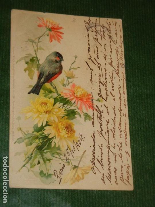 ANTIGUA POSTAL NUESTROS AMIGOS DEL JARDIN - MEISSNER & BUCH, LEIPZIG CIRC.1904 (Postales - Postales Temáticas - Dibujos originales y Grabados)