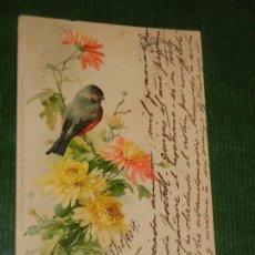 Postales: ANTIGUA POSTAL NUESTROS AMIGOS DEL JARDIN - MEISSNER & BUCH, LEIPZIG CIRC.1904. Lote 162508306