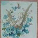 Postales: POSTAL DE 1909. Lote 162513530