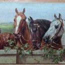 Postales: POSTAL DE 1907. Lote 168694612