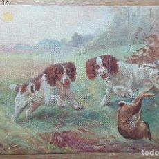 Postales: POSTAL DE 1909. Lote 168695692
