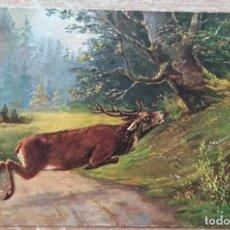 Postales: POSTAL DE 1903. Lote 168944924
