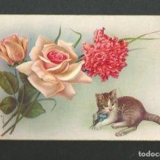 Postales: POSTAL SIN CIRCULAR - DIBUJO - FELICITACION - EDITA CYZ 513/B. Lote 183881170