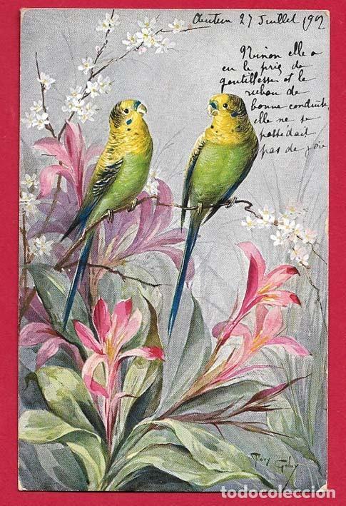 AE865 PAJAROS AVES PERICOS VERDES Y FLORES POSTAL FIRMADA (Postales - Postales Temáticas - Dibujos originales y Grabados)