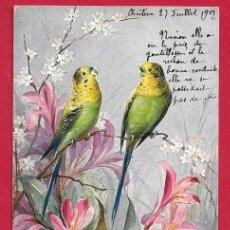 Postales: AE865 PAJAROS AVES PERICOS VERDES Y FLORES POSTAL FIRMADA. Lote 193779580