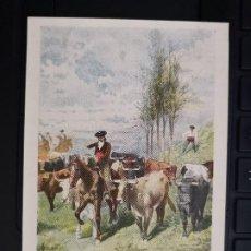 Postales: POSTAL SERIE TOROS TAUROMAQUIA EDIC CALLEJA MADRID Nº 504 ENCIERRO REV SIN DIVIDIR PERFECTA CONSERV. Lote 193805972