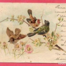Postales: AE953 ANIMALES PAJAROS AVES JILGUERO HERRERILLO CON FLORES DE PRIMAVERA FECHA 1902. Lote 194334042
