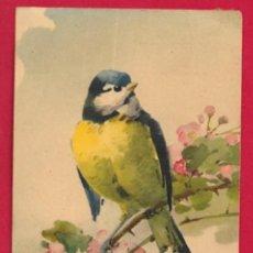Postales: AC831 PAJAROS AVES HERRERILLO Y FLORES POSTAL FIRMADA KLEIN. Lote 194618308