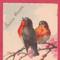 Postales: AE406 AVES PAJAROS PETIRROJO SOBRE RAMA DE FLORES DE FRUTALES POSTAL FIRMADA. Lote 195030997