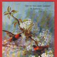 Postales: AB614 AVES PAJAROS EXOTICOS IGNICOLORES ' EUPLECTES FRANCISCANUS )Y FLORES POSTAL FIRMADA. Lote 198171945