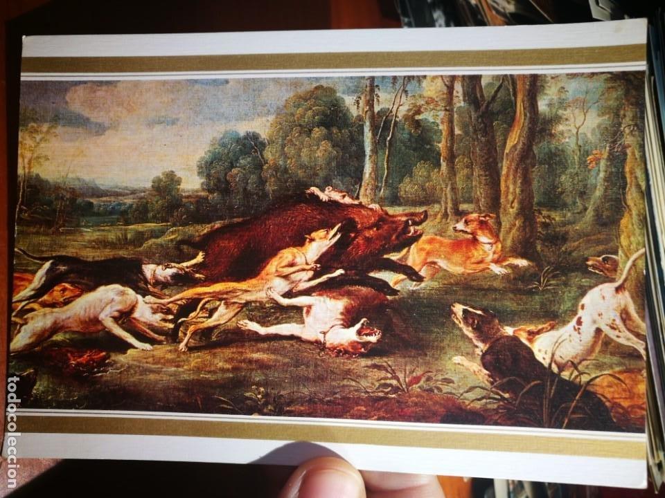 POSTAL JABALÍ ACORRALADO SNYDERS 1579-1657 N 205 ESCUDO DE ORO S/C (Postales - Postales Temáticas - Dibujos originales y Grabados)