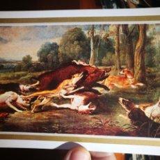 Postales: POSTAL JABALÍ ACORRALADO SNYDERS 1579-1657 N 205 ESCUDO DE ORO S/C. Lote 198591252