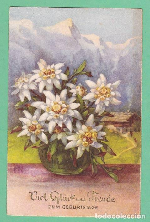 Postales: AD2 FLOR FLORES EDELWEISS POSTAL FIRMADA - Foto 1 - 199265443