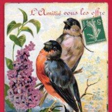 Postales: AC478 AVES PAJAROS CAMACHUELOS Y FLORES DE LILA POSTAL GOFRADA CIRCULADA 1909. Lote 199698655