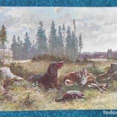 Postales: BONITA Y VALIOSA POSTAL DE 1906. Lote 206334363