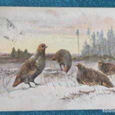 Postales: BONITA Y VALIOSA POSTAL DE 1906. Lote 206334496