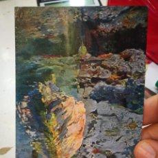 Cartoline: POSTAL JOAQUÍN MIR EL TOCHO DE L'ESTANY MUSEO DE ARTE Y ARQUEOLOGÍA DE BARCELONA EDICIONES THOMAS S/. Lote 220554580