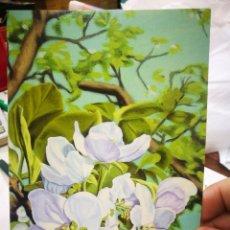 Postales: POSTAL ÁRBOL EN FLOR MARIUSZ MACZKA PINTOR CON LA BOCA S/C. Lote 221278595