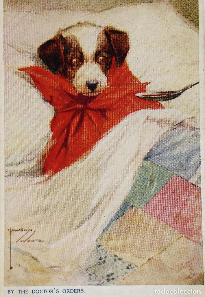Postales: P-12284. BY THE DOCTORS ORDERS(POR PRESCRIPCIÓN MÉDICA). LAWBON WOOD SERIES. AÑO 1916 - Foto 2 - 246506680