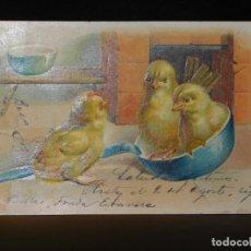 Postales: POSTAL ROMÁNTICA *POLLITOS EN RELIEVE* CIRCULADA, 1905. Lote 288167258