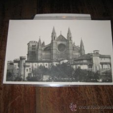 Postales: CATEDRAL . Lote 8630432