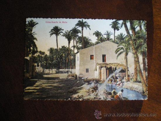 ELCHE-HUERTO DE MALLA (Postales - España - Sin Clasificar Moderna (desde 1.940))