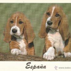 Postales: Nº 14737 POSTAL ESPAÑA PERROS. Lote 45955926