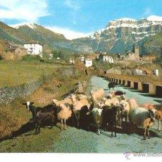 Postales: LOTE B POSTAL TORLA HUESCA AÑOS 60 EDITA SICILIA SIN CIRCULAR. Lote 48342478