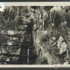 Postales: FIGARO - FONT PUNCHAGUDA - FOTOGRAFICA - (34806). Lote 50949011