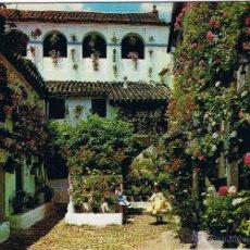 Postales: ESPAÑA - PATIO TIPICO ANDALUZ. Lote 51504269