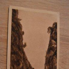Postales: POSTAL 10 * MALLORCA * SANTUARIO NTRA SEÑORA DE LLUCH * CARRETERA * CIRCULADA FECHADA 1942*P-5. Lote 77471421
