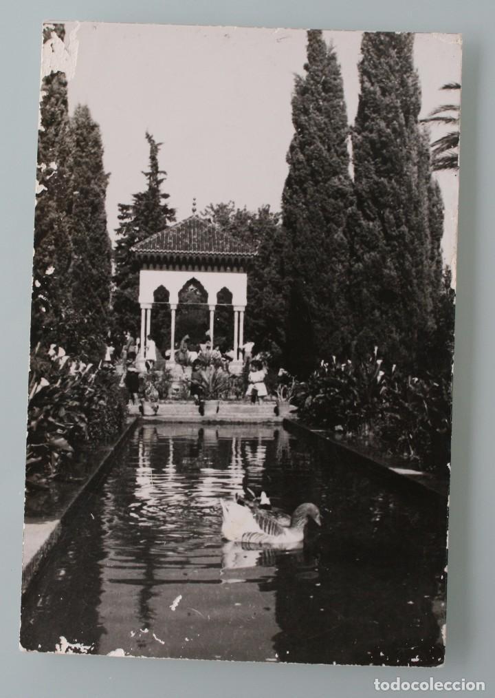 ANTIGUA POSTAL FOTO GARCIA – CORTES BLANCO NEGRO DE TETUAN PARQUE CAGIGAS – AÑOS 50 (Postales - España - Sin Clasificar Moderna (desde 1.940))