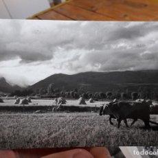 Postales: PUIGCERDA, PAREJA ARANDO, ED. CYP, 1950, Nº20. Lote 93894535