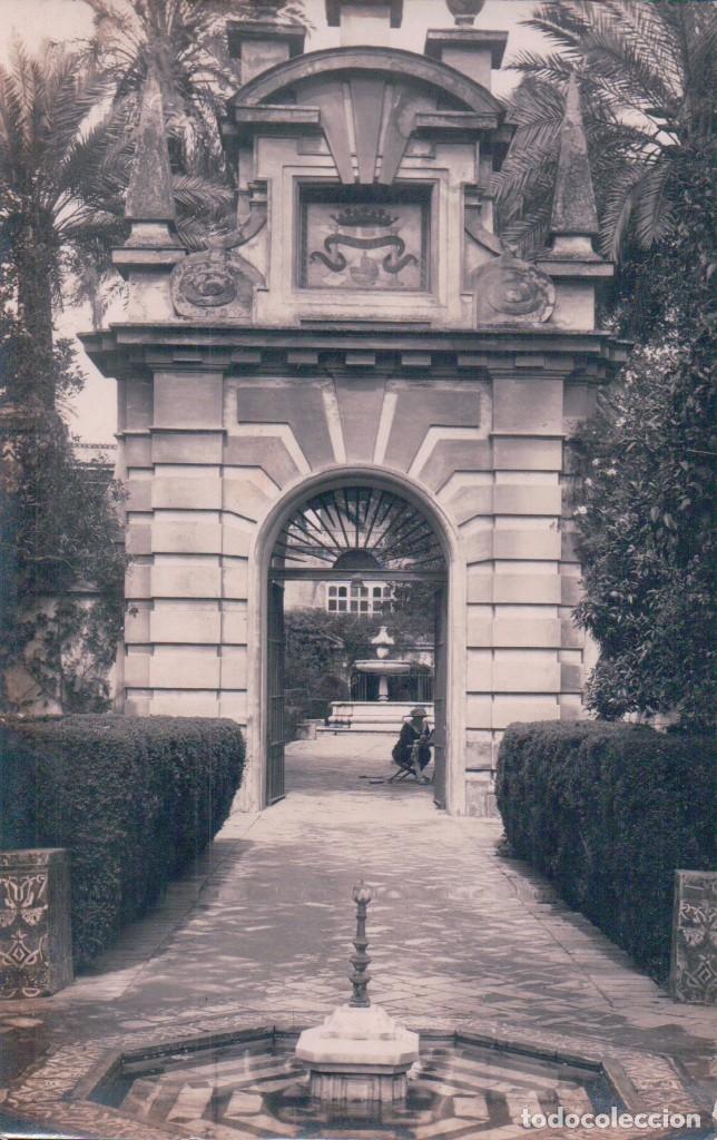 POSTAL FOTOGRAFICA (Postales - España - Sin Clasificar Moderna (desde 1.940))