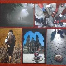 Postales: AÑO JACOBEO 2010 XACOBEO 2010 GALICIA LOTE CINCO POSTALES NUEVAS. Lote 96383775