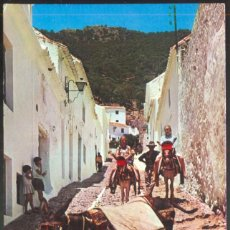 Postales: BURRITOS TIPICOS - 5230. Lote 114976911