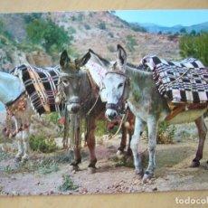 Postales: ESPAÑA - BURRITOS. ESPERANDO PASAJEROS. Lote 118619671