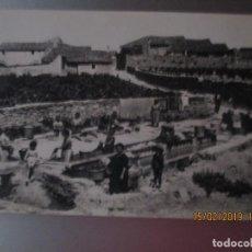 Postales: POSTAL BARBARA (BARBERA DE LA CONCA): RENTADORS. Lote 151421430