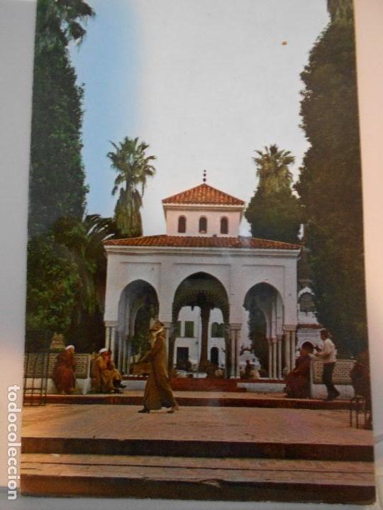TETUAN. PLAZA DE ESPAÑA. POSTAL. (Postales - España - Sin Clasificar Moderna (desde 1.940))