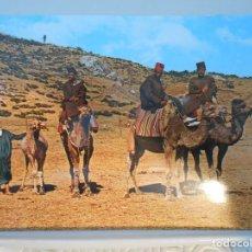 Postales - MARRUECOS. CAMELLEROS. POSTAL. - 165494806